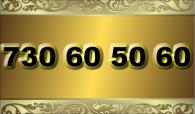 zlaté  číslo - 730 60 50 60
