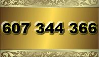 zlaté  číslo - 607 344 366 - O2