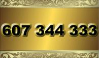 zlaté  číslo - 607 344 333 - O2