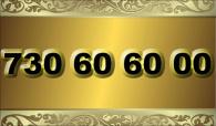 zlaté číslo - 730 60 60 00