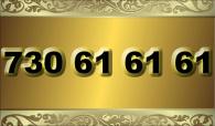 zlaté  číslo - 730 61 61 61