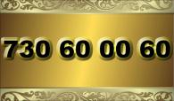 zlaté  číslo - 730 60 00 60