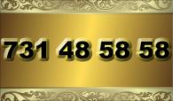 zlaté  číslo - 731 48 58 58  T-mobile