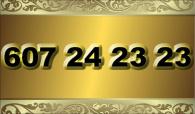 zlaté  číslo - 607 24 23 23